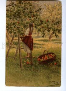189061 RUSSIA SERGEEV garden Vintage St.Eugenie #231 postcard