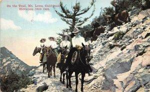 LPS15 Mt. Lowe California Riding Donkeys along Trail Postcard