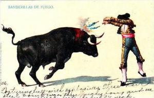 Mexico Bullfight Banderillas De Fuego