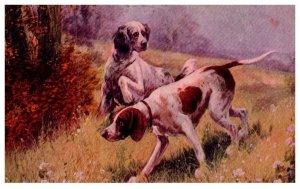 Dog ,Hunting Dogs