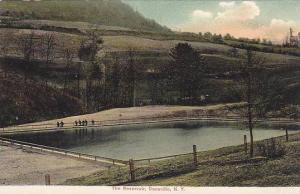 The Reservoir, Dansville, New York, 1900-1910s