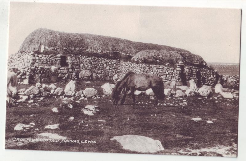 P1073 unused vintage scotland crofters cottage, barvas, lewis with horse