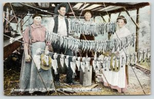 St Joe River Idaho~Family With Morning's Catch~Speckled Trout/Black Bass~1909PC