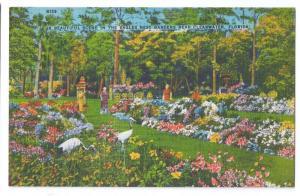 Eagles Nest Garden Clearwater Florida Vintage Linen Postcard