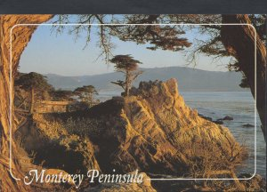 America Postcard - The Monterey Peninsula, Near Carmel    RR2985