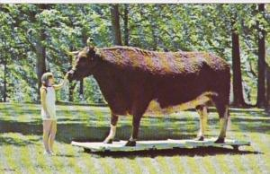 Indiana Kokomo Old Ben World's Largest Steer Highland Park