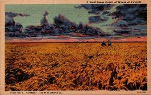 Texas A West Texas Ocean Of Wheat At Twilight Curteich
