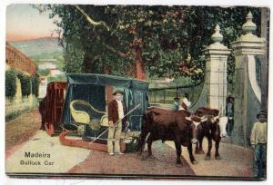 Madeira Bullock Car