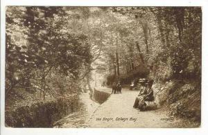 The Dingle, Colwyn Bay, Wales, United Kingdom, 1900-1910s