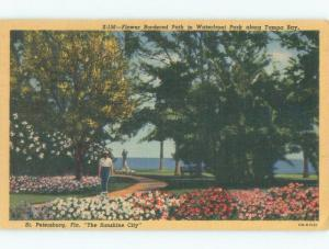 Linen BORDER PATH ON TAMPA BAY AT WATERFRONT PARK St. Petersburg FL c8796