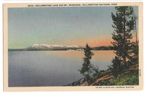 WY Yellowstone Lake & Mt Sheridan Vintage Haynes National Park Postcard