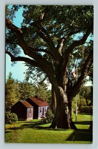Franklin NH- New Hampshire, Daniel Webster's Birthplace, Chrome Postcard