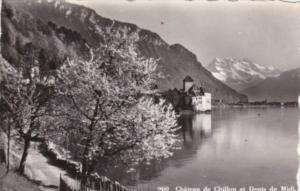 Switzerland Chateau de Chillon et Dents du Midi Photo