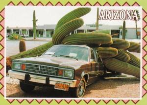 Arizona Giant Saguaro Cactus On Top Of Car