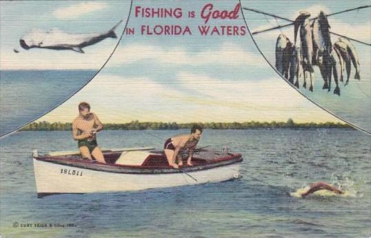 Florida Fishing is Good In Florida Waters Curteich