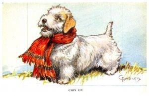 Dog , Chin Up