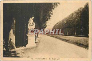 Postcard Old Versailles Green Carpet