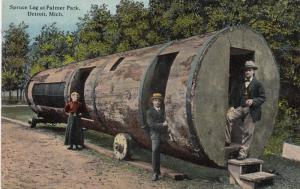 DETROIT , Michigan , 1900-10s ; Spruce Log at Palmer Park