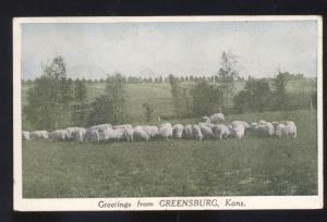 GREETINGS FROM GREENSBURG KANSAS SHEEP FARM FARMING RANCH VINTAGE POSTCARD