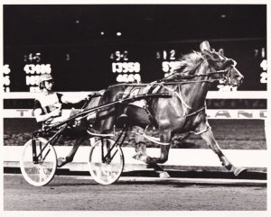 RP; RUTHERFORD, New Jersey, 1987; Even Odds Wins The Woodrow Wilson Pace, Mea...