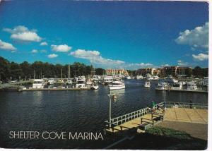 South Carolina Hilton Head Island Shelter Cove Marina