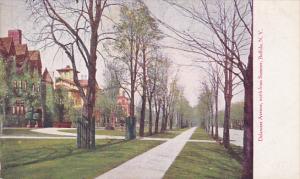 Delaware Avenue, north from Sumter, Buffalo, New York, 00-10s