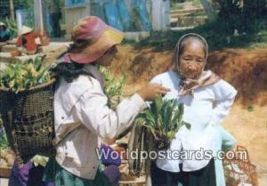 Vietnam, Viet Nam,  Nhân Vật  Hoa Rimg, Wild Flower