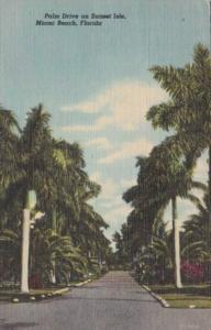 Florida Miami Beach Palm Drive On Sunset Isles 1952