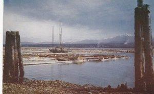 PORT ANGELES , Washington , 1950-60s ; Log Boom
