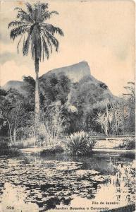 bg18944 RIo de Janeiro Jardim Botanico e Corcovado brazil brasil