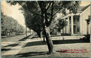 1910s COLUMBIA CITY Indiana Postcard View on Chauncey Street Houses CR Childs