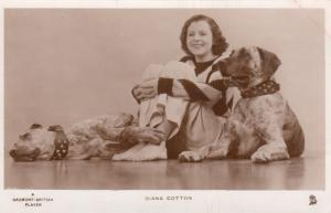 RP: Actress portrait Diana Cotton & 2 Dogs , 1940s; TUCK