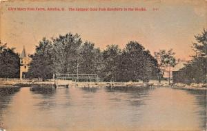 AMELIA OH~GLEN MARY FISH FARM~LARGEST COLD FISH HATCHERY IN WORLD 1909 POSTCARD