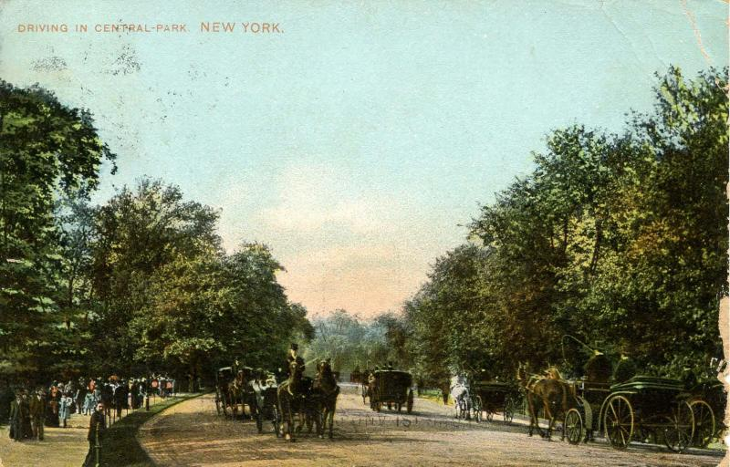 NY - New York City. Driving in Central Park, 1900