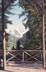 INTERLAKEN, Berne, Switzerland; Die Jungfrau vom Rugen aus gesehen, 00-10s