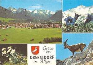 Gruesse aus Oberstdorf im Allgaeu, Gesamtansicht Berg Mountain Goat Flowers