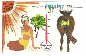 I'm suntanning in Florida while you're Freezing your A off humor Postcard
