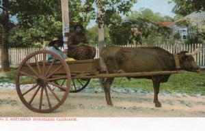Southern Horseless Carriage