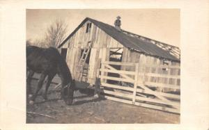 Real Photo Postcard~Farmer Roofing Barn~Up on Roof~Horse Sniffing~c1912 RPPC