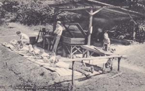 BRINKHAVEN, Ohio, 30-50s; Y.M.C.A. Camp Gun Range