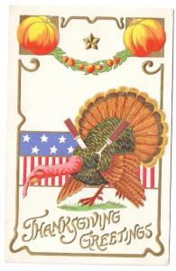 Patriotic Thanksgiving Turkey Knife Fork Powls Valley Doane DPO Cancel Postcard