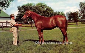 Yearling Ready for sale Lexington, Kentucky, KY, USA Unused