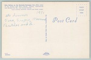 Burkesville Kentucky~Dale Hollow On KY-TN Line~Vintage Postcard