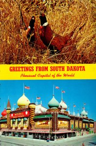 South Dakota Greetings From The Pheasant Capitol Of The World Showing Corn Pa...