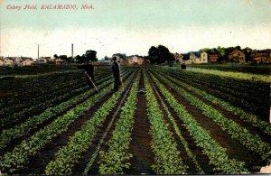 Michigan Kalamazoo Typical Celery Field 1907