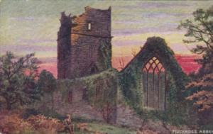 Ireland Killarney Muckross Abbey