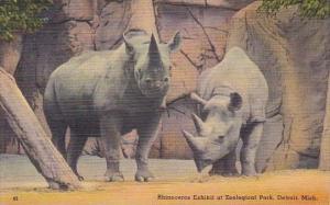 Rhinoceros Exhibit At Zoological Park Detroit Michigan