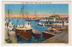 Woods Hole, Cape Cod, Mass, Busy Harbor Scene