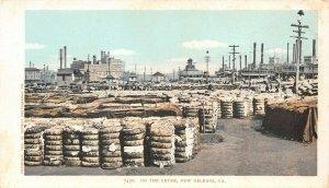 LP66     New Orleans Louisiana  Postcard Cotton Levee Detroit Publishing