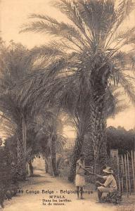 DR Congo Belge, M'Pala, Jardins, In de tuinen, garden